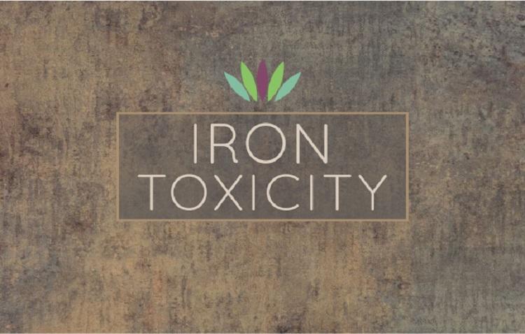 Iron-Toxicity.jpg