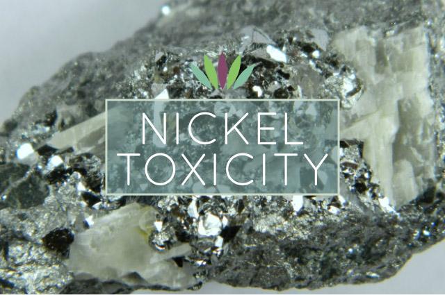 Nickel-Toxicity.jpg