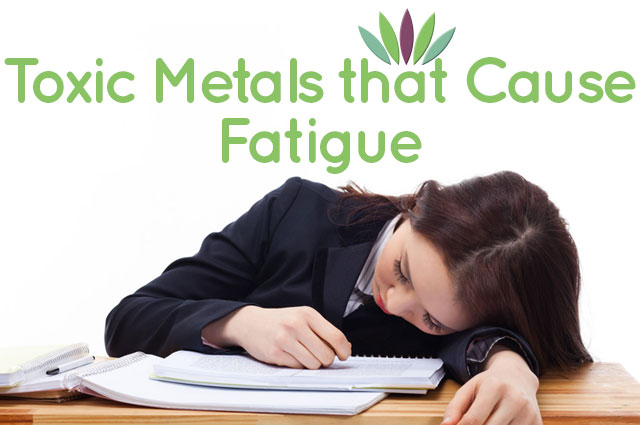 Toxic-Metals-that-Cause-Fatigue-main-graphic