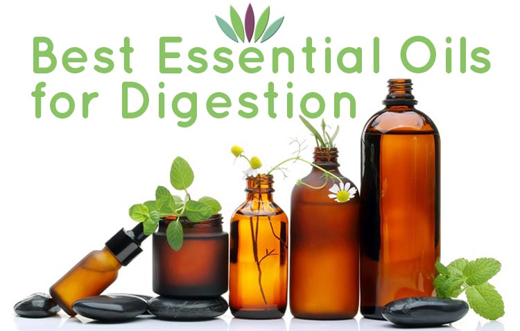 Best-Essential-Oils-for-Digestion-750X478