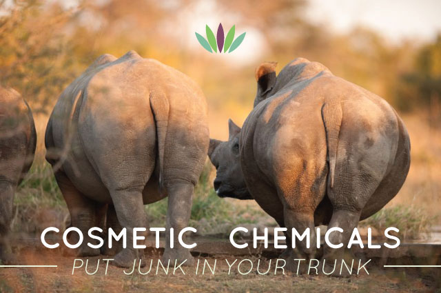 Cosmetics-in-Chemical-put-junk-in-your-trunk