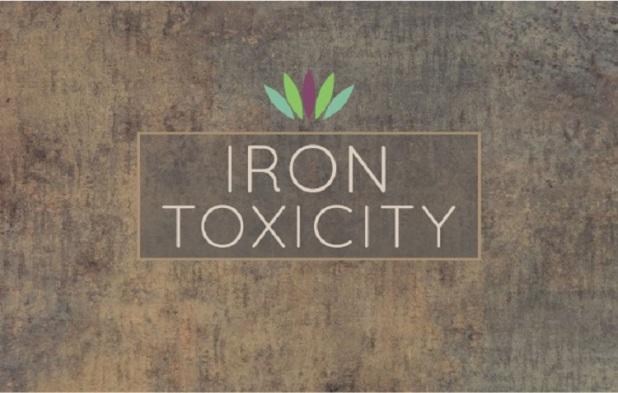 Iron-Toxicity