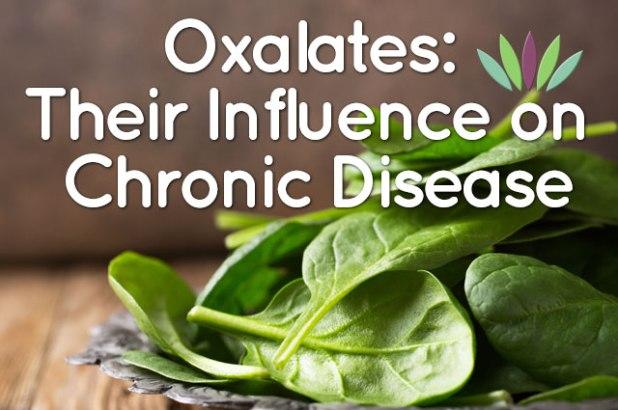 Oxalates-Their-Influence-on-Chronic-Disease-main-graphic