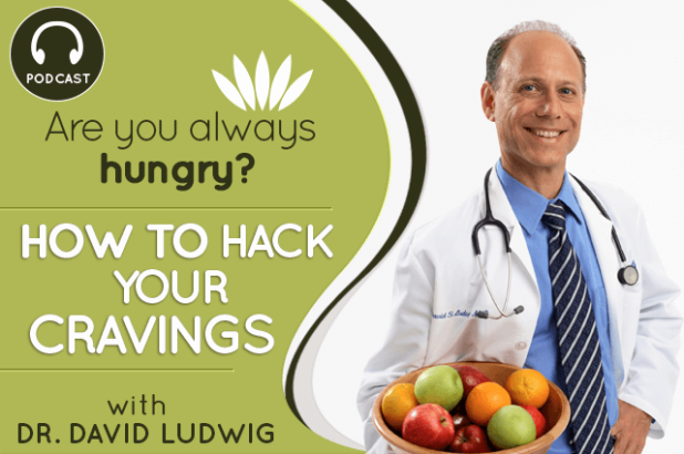 Dr.-David-Ludwig-main-graphic-1-1
