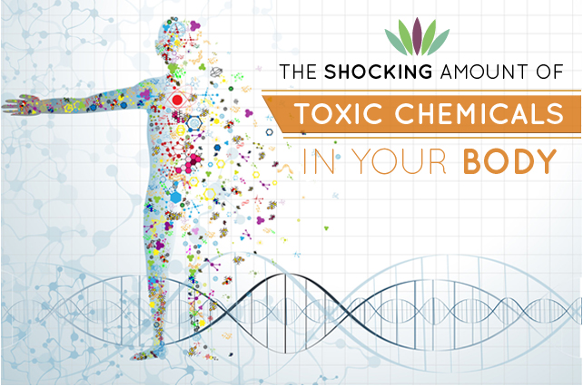 The-Shocking-Amounts-of-Toxic-Chemicals-in-your-body-main-graphic